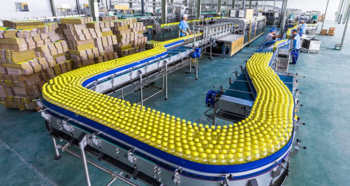 HepcoMotion - Industry Solutions | Packaging